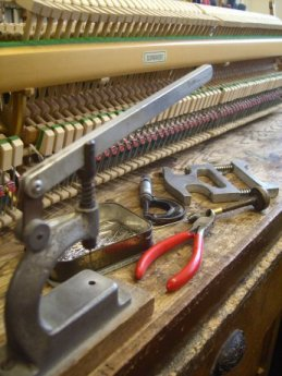 Action reconditioning in Carstairs Pianos workshop.